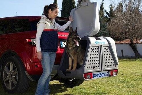 TowBox System BOX System DOG V2, grau, seitl. Beladung AHK Lastenträger
