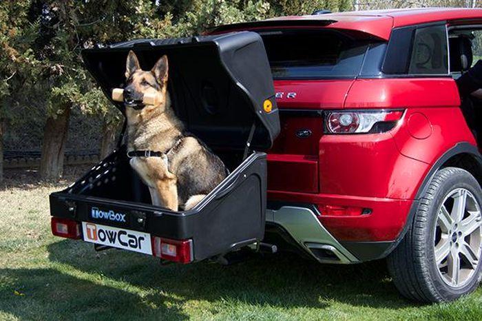TowBox System BOX System DOG V1, schwarz, Toplader AHK Lastenträger